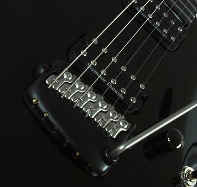 Parker Guitar 1