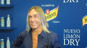 iggy pop refresco